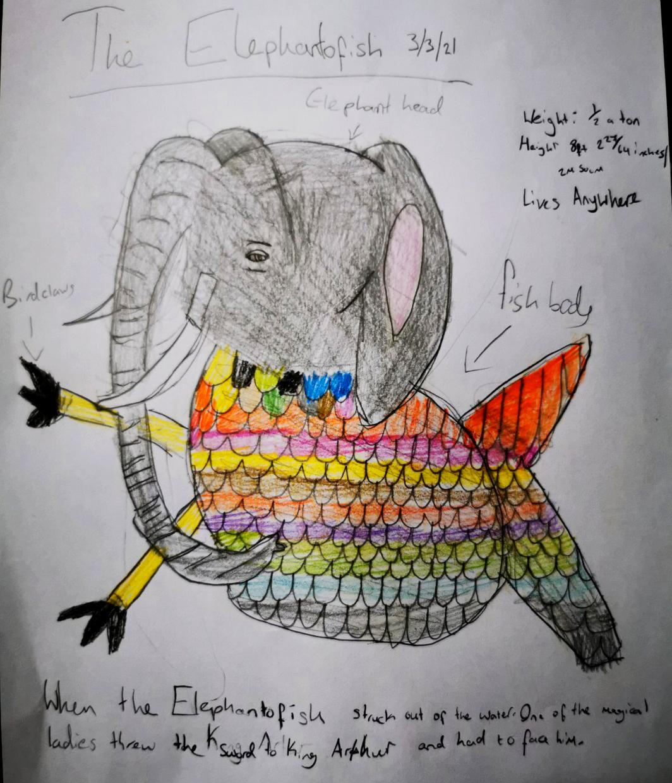 Elephantofish_by_Anthony