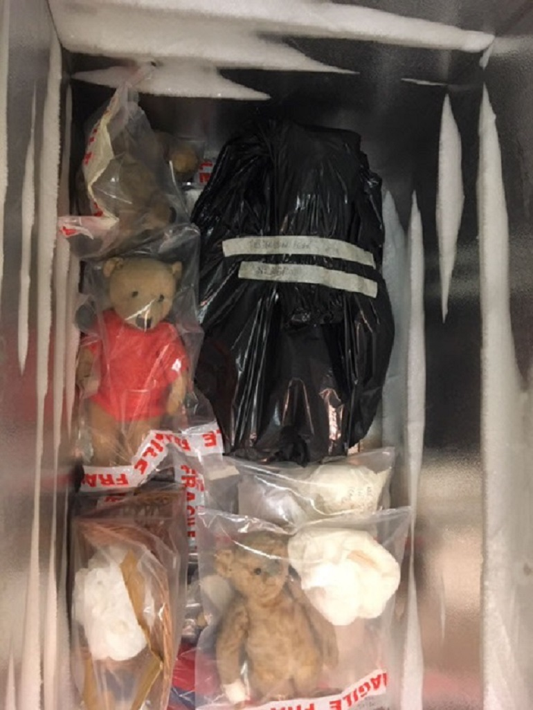 Teddy bears in freezer