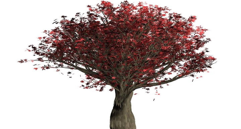 Decorative Scrap Paper Tree