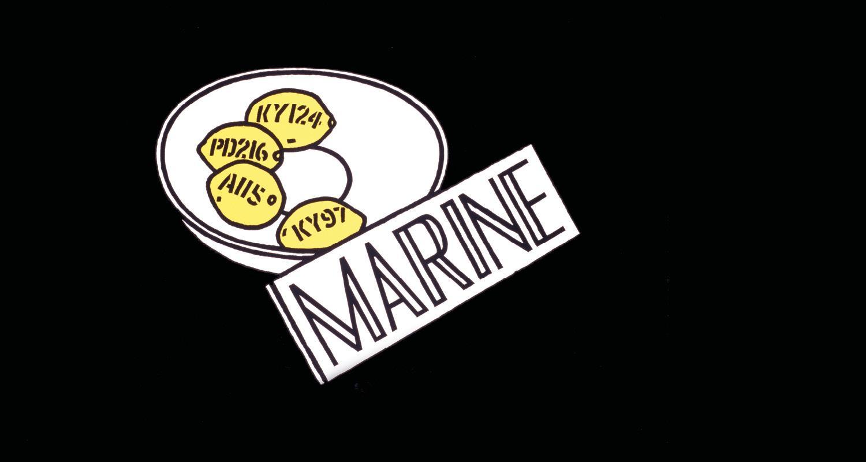 Marine by Ian Hamilton Finlay