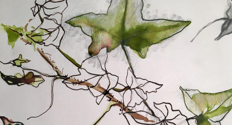 Plants in Ink masterclass