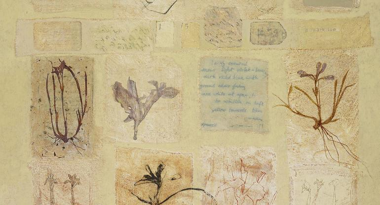 Victoria Crowe: Portraits and Plant Memory