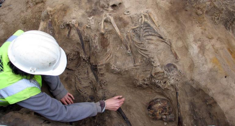 Edinburgh Archaeology Service