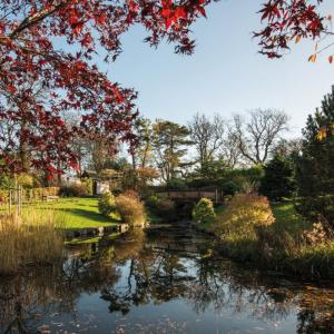 Japanese Garden at Lauriston Castle